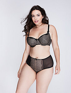 Veiled Lace Full Brief Panty