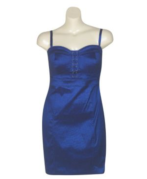Blueberry Dress
