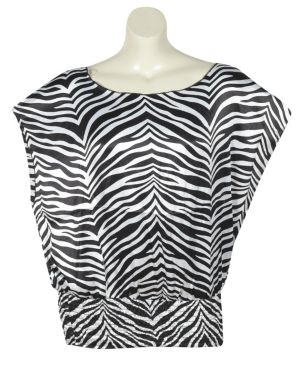 Multi Color Zebra Top