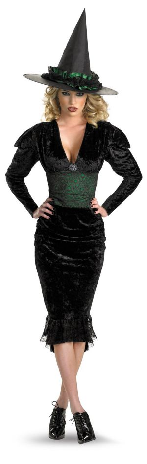 Bygone Witch Adult Plus Costume