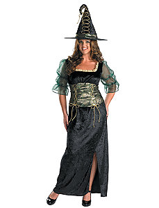 Emerald Witch Adult Costume by Disguise
