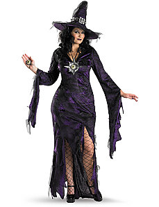 Sorceress Plus Adult Costume by Disguise