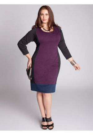 Alexandra Colorblock Dress in Plum