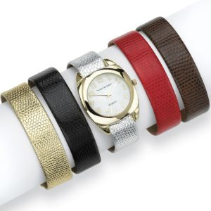 Interchangeable Band Watch Set