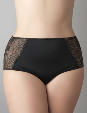 Beautiful passion lace brief panty