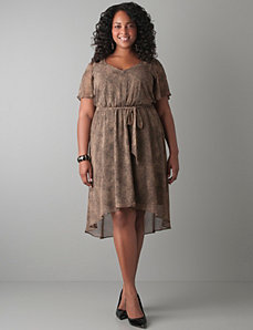 Plus Size Animal Print Dress by Lane Bryant