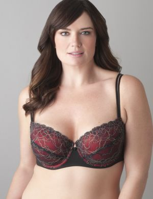Passion lace demi bra