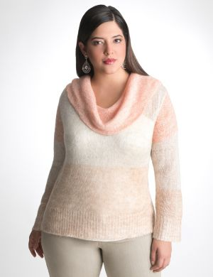 Cowl neck colorblock sweater