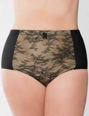 Bold Lace High Waist Brief panty