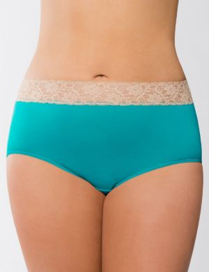 Beautiful lace waist full brief panty