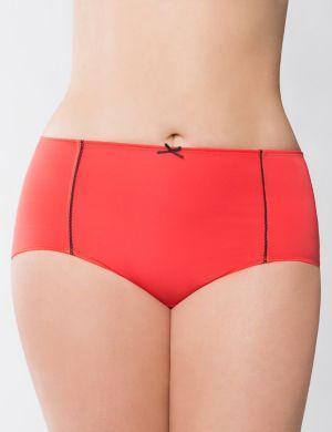 Dazzler microfiber brief panty