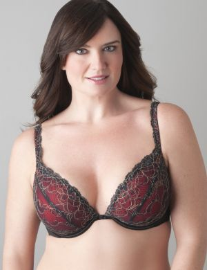 Passion lace plunge bra