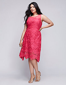 Lace A-Line Dress by Julia Jordan