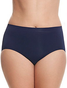 Seamless brief panty
