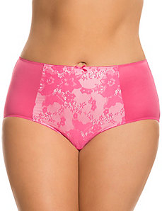 Bold lace brief panty